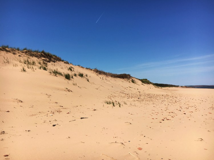Cavendish Dunes