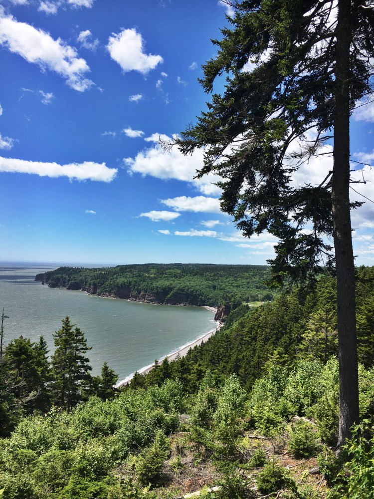 Black Point Lookout 4 - Fundy Trail Parkway