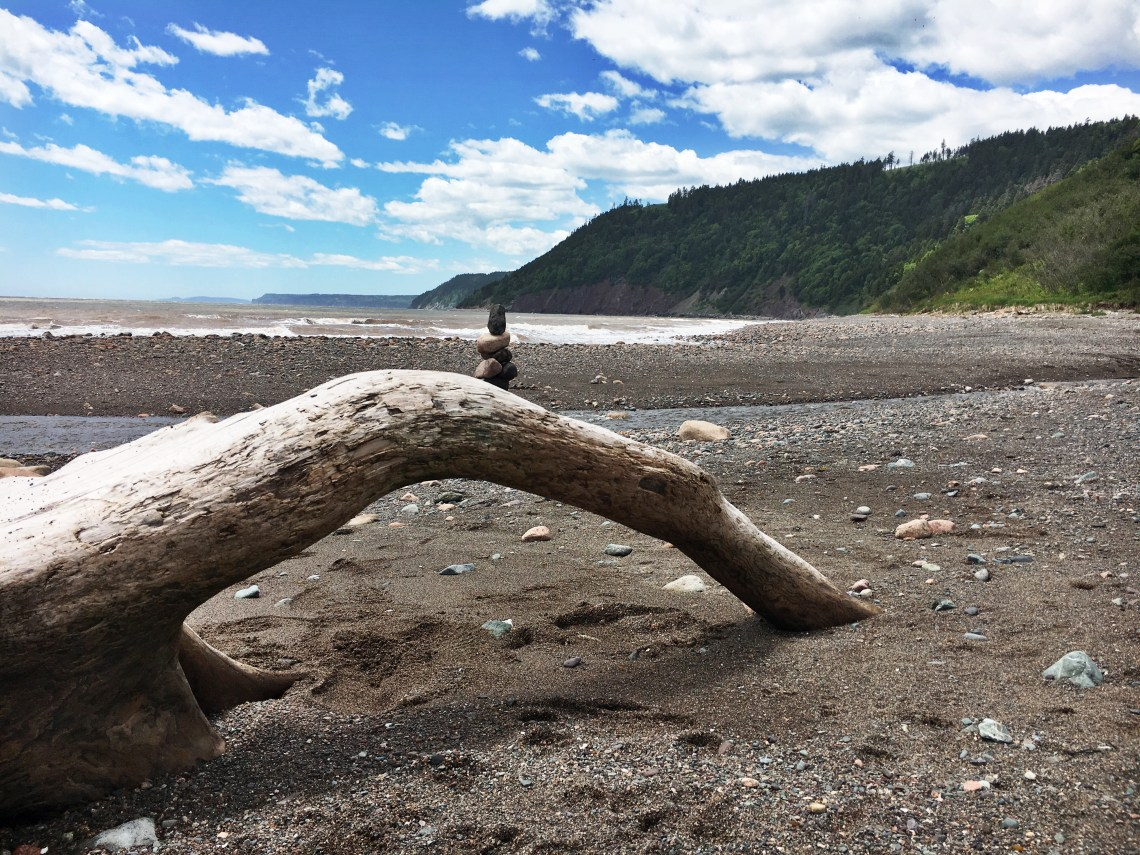 Driftwood Long Beach 4 - Fundy Trail Parkway