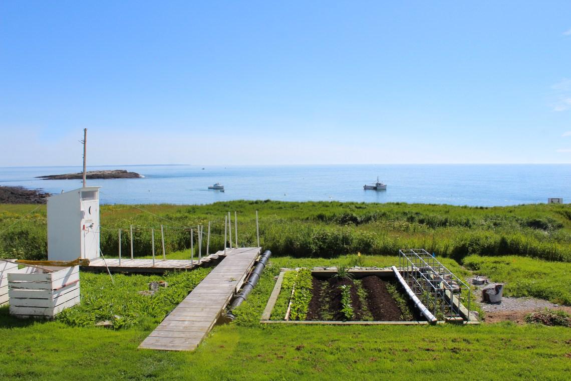 Machias Island 19