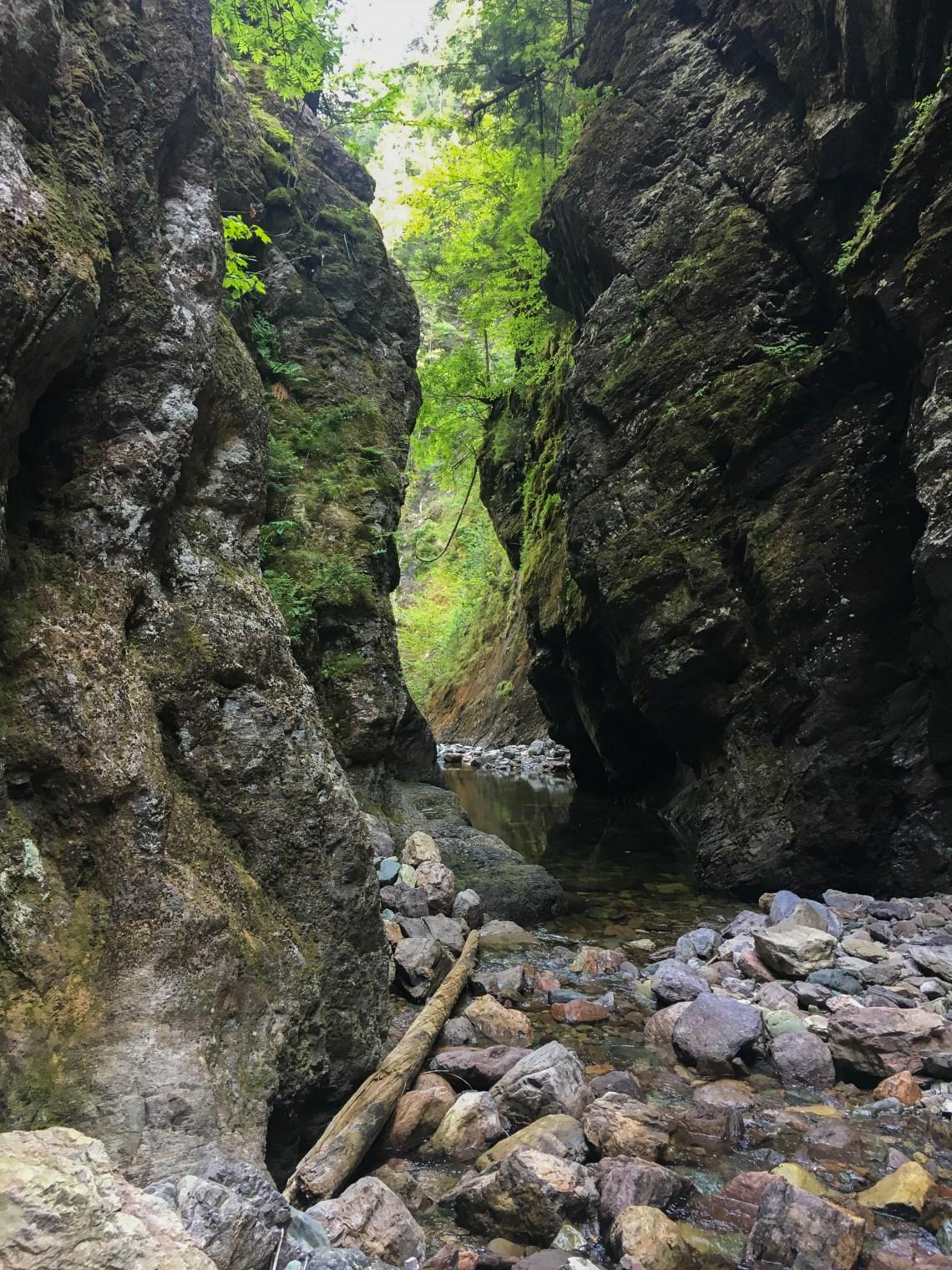 Walton Glen Gorge 19