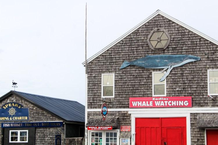St. Andrews East Coast Mermaid 19
