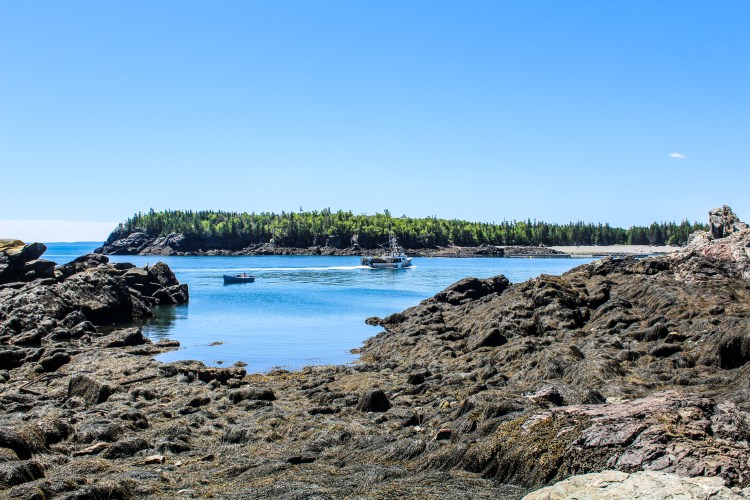 East Quoddy Lighthouse copy