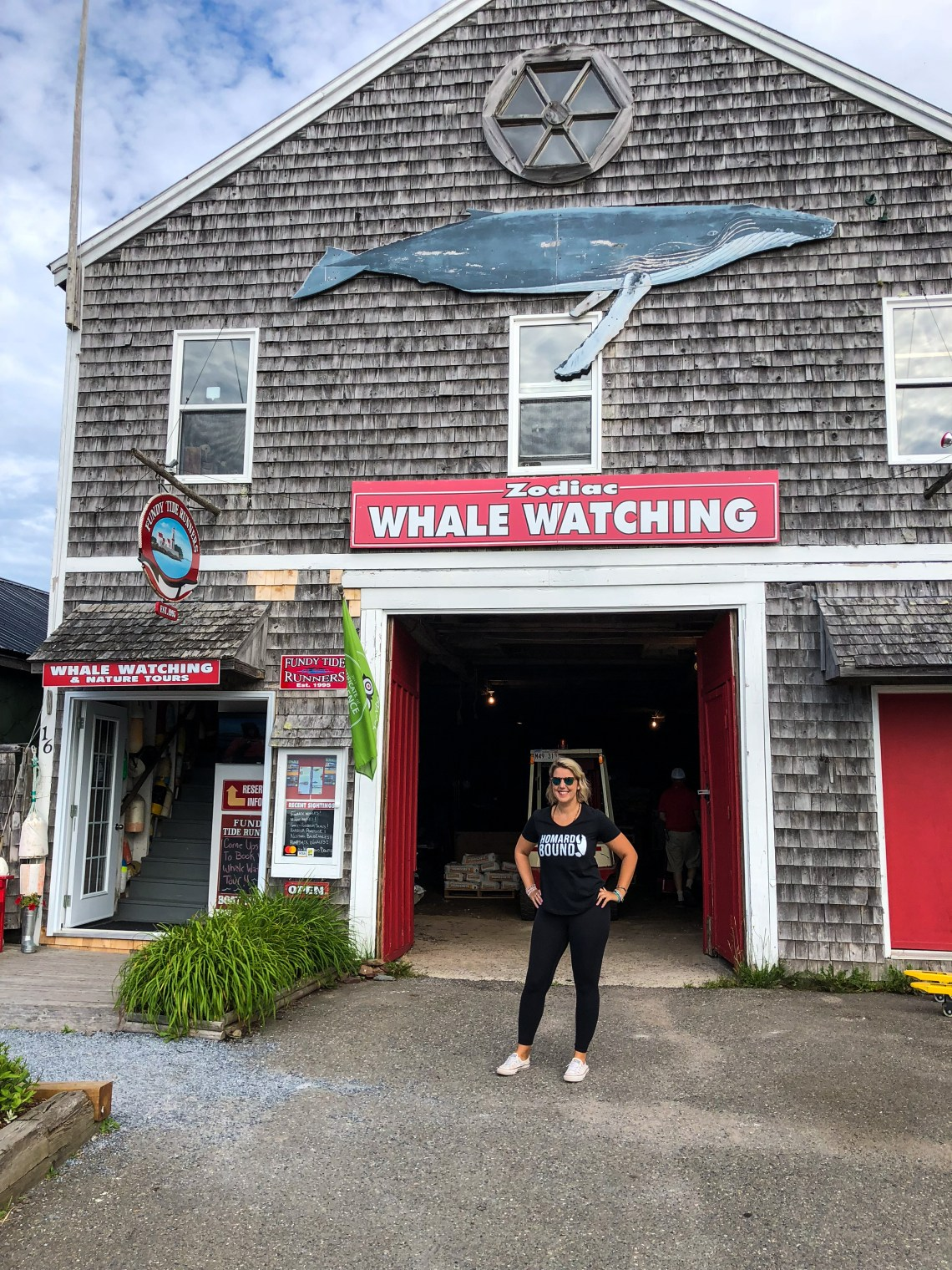 Whale Watching in St. Andrews_