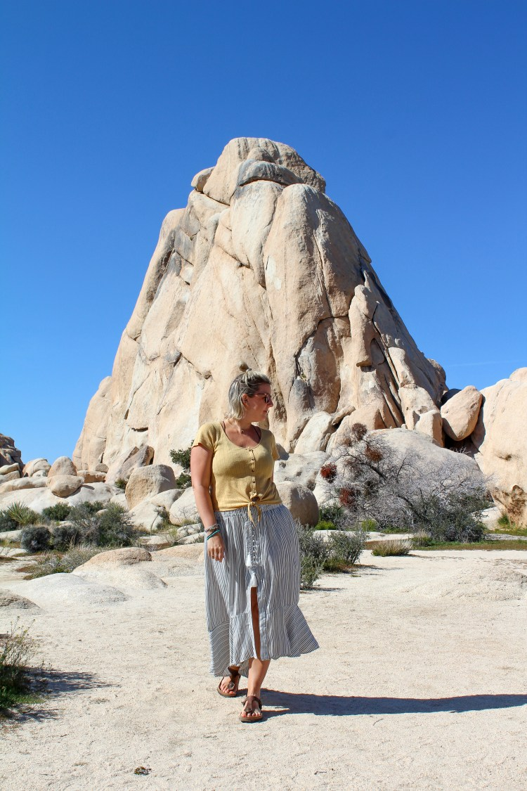 Joshua Tree National Park 8