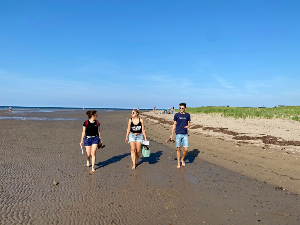 10 Basking Spots in Pointe-du-Chêne (PDC) and Shediac with East Coast Mermaid