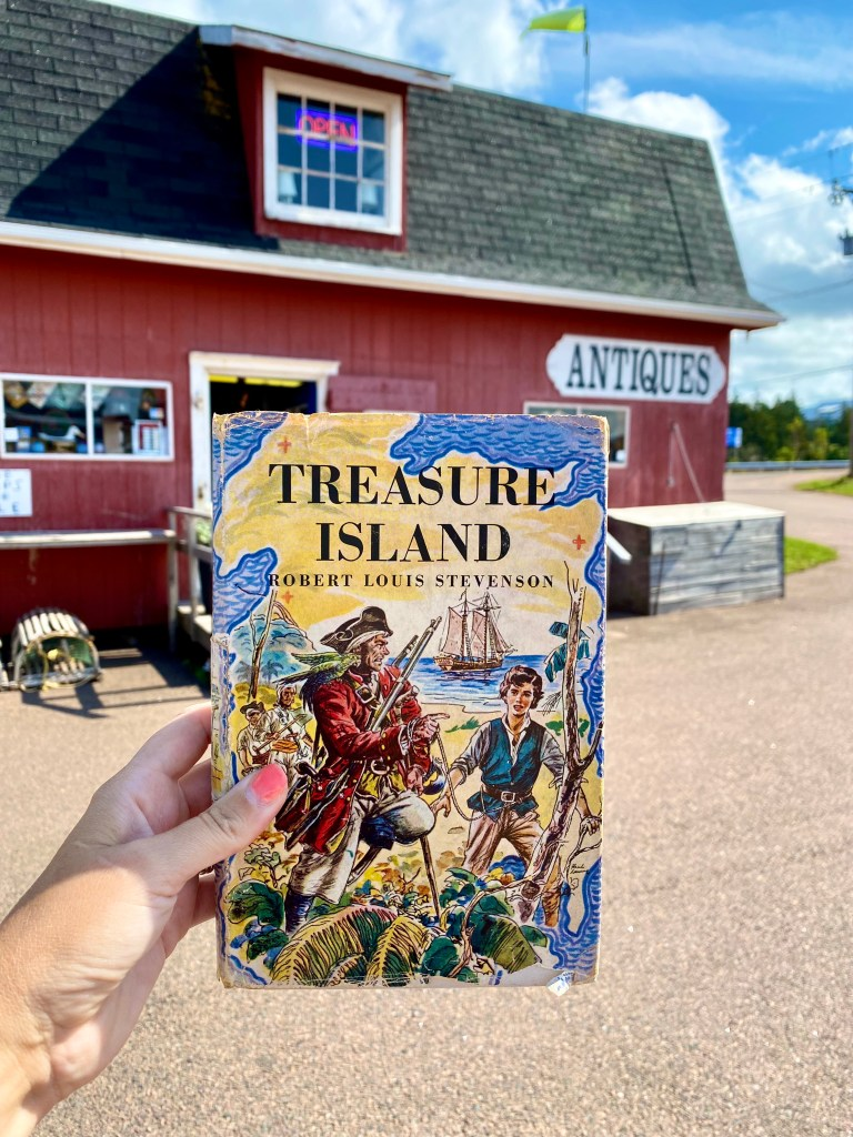 Treasure Island book held up in front of an antique shop.