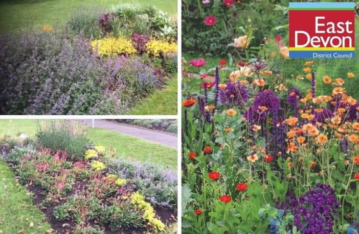 Planting in East Devon. Images: EDDC