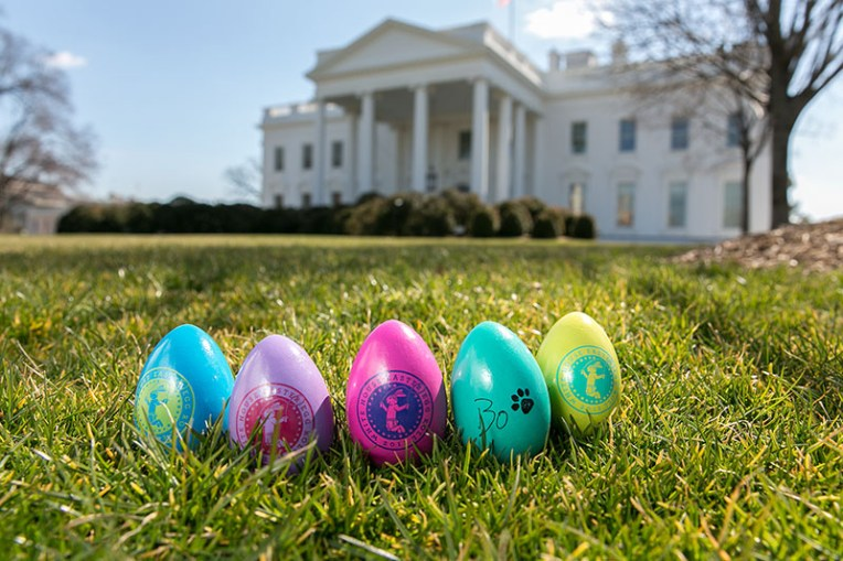 http://www.gazettenet.com/blogs/theconspicuousconsumer/5310710-95/easter-bunny-site-president