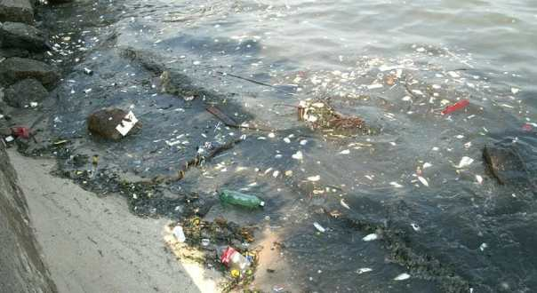2016 summer olympics brazil environmental pollution
