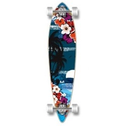 Punked Tropical Nights 40""