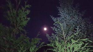 Full Moon over teh trail to Allen Mountain - September 2018