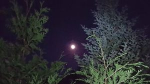 Full Moon over teh trail to Allen Mountain - September 2018