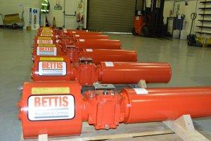 Repair for Bettis