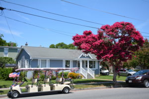 Life And Real Estate On The Eastern Shore Of Virginia