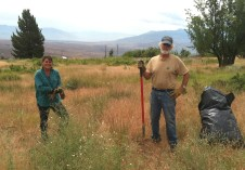 Wally (right), pulling weeds in Swall Meadows to maintain healthy native plant populations and enhance wildlife habitat.