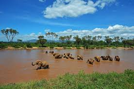 Samburu National Reserve - Safaris with rewarding experience done by eastern vacations tours