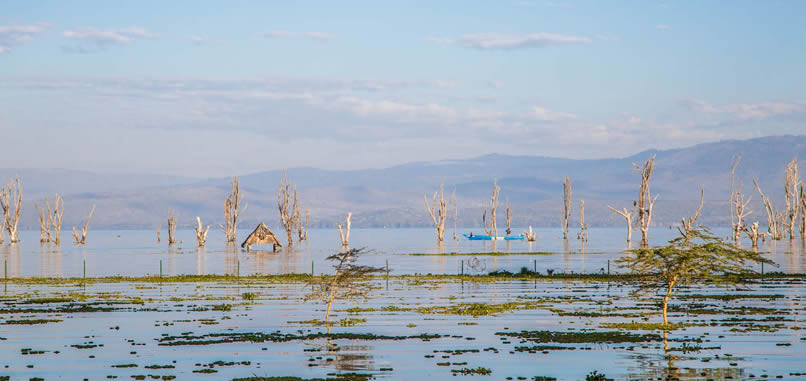 lake-naivasha-resort5
