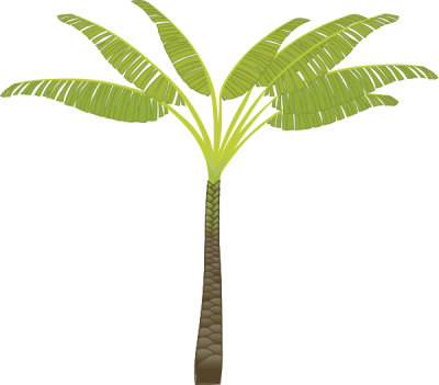 palm_tree_7