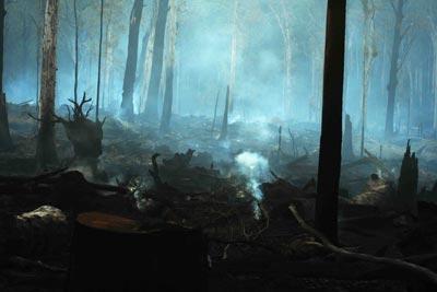 Brown Mountain after logging Photo J Deland