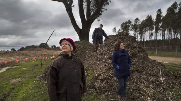 Helen Lewers, Gavin Jamieson and Kate Vivian next to a tree which has been turned into mulch during construction
