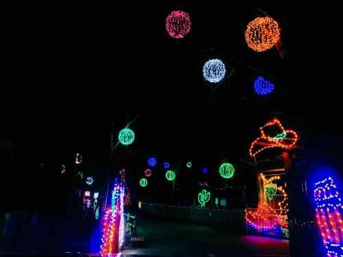 zoo holiday lights 2