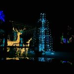 Zoo Holiday Light Show Is Spectacular