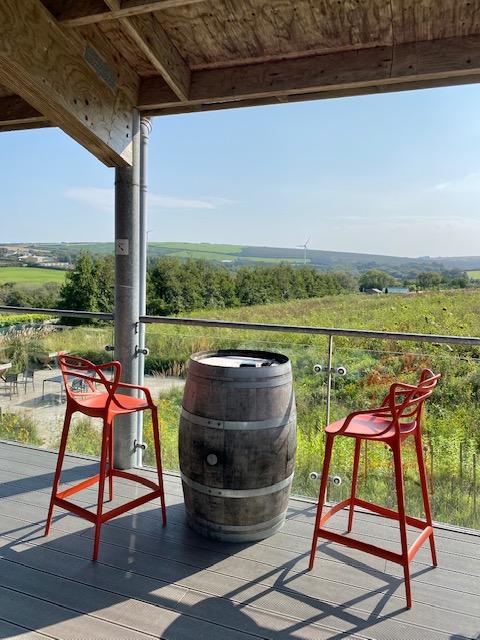 vineyard in padstow