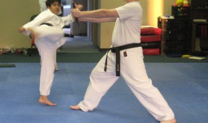 Recommended Martial Arts Programs