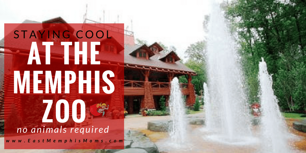 Places to Cool off at the Memphis Zoo - EastMemphisMoms.com