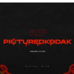 Zlatan - RIP picture Kodak mp3 download
