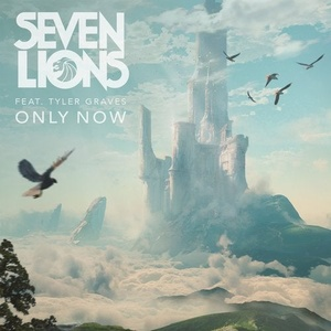 Seven Lions – Only Now Ft. Tyler Graves