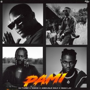 DJ Tunez Ft. Wizkid, Adekunle Gold & Omah Lay – Pami mp3 audio song lyrics