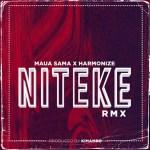 Maua Sama Ft. Harmonize – Niteke (Remix)