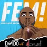Davido – FEM (Amapiano Remix)