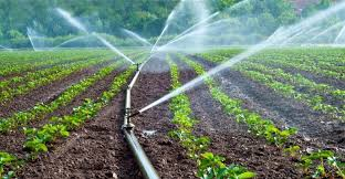 Photo of Teso Misses Out On Gov't Phase One Micro-Scale Irrigation Program