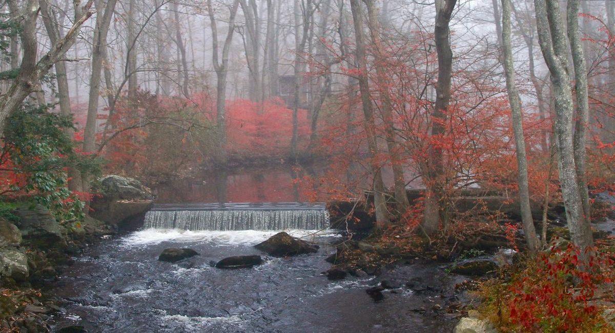 waterfall_shannoncalvert