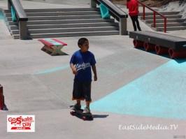 Go Skateboarding Day 2015