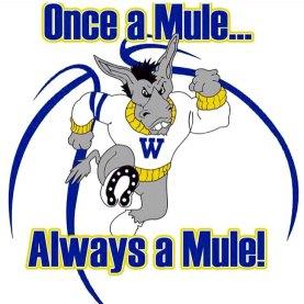 LA Wilson Mules