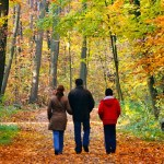 Fall walk active living