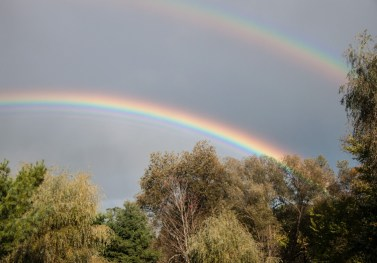 A lovely double rainbow graced the sky yesterday evening as a quick shower moved through.