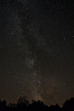 """Last night's clear skies offered a great opportunity to take shots of the Milky Way. In this view, looking south from our front field, you can make out the """"Tea Pot"""" of Sagittarius just above the trees."""