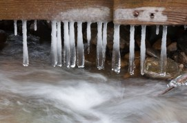 Long, bulbous icicles formed beneath our old bridge down in Fargo Brook.