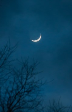 Yesterday evening's crescent moon peeks out from behind the clouds.