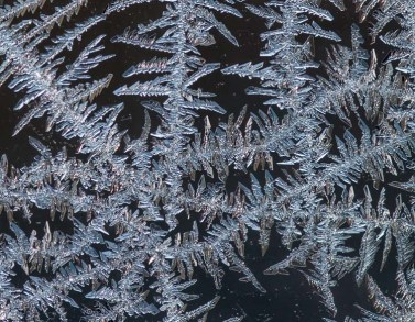 Another shot of frost crystals formed on the inside of our barn windows.