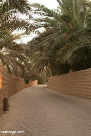 Oasis - Al Ain