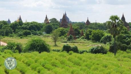 Bagan-12