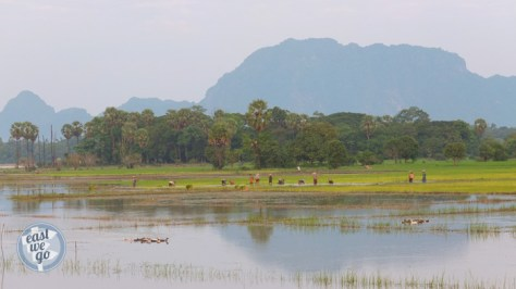 Hpa An-20