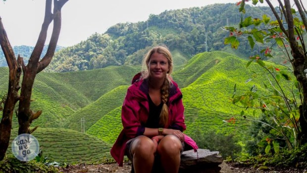 Cameron Highlands-27