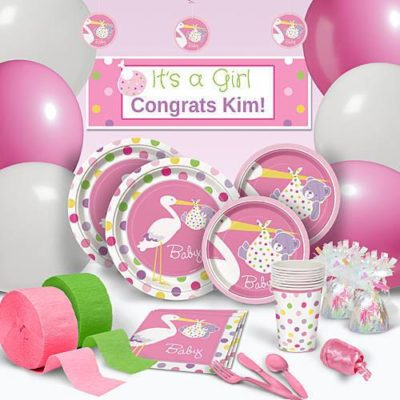girl stork baby shower party theme